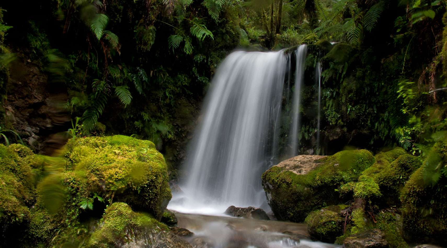 One of Haast's many waterfalls